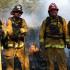 Firefighter/paramedics Greg Dupuis, Andrew Askew, Captain Todd Wilson and Lt. Andy Jones.