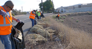 Volunteers collected trash along Jensen Ave. (Photo by Cheryl Senn)