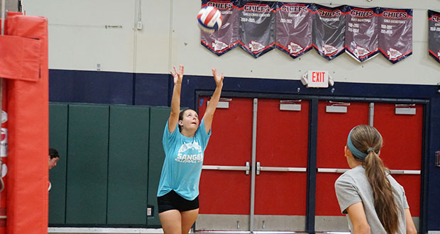 Gold Medal Squared volleyball training advanced athlete's ...
